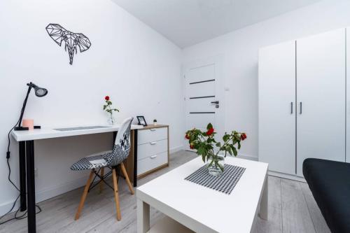 Mieszkanie dla Inwestora 37m2 - 3 pokoje - 12